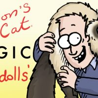 Simon's Cat Logic - Things You Didn't Know About Ragdolls!